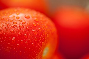 Macro of Fresh, Vibrant Roma Tomatoes with Water Drops Abstract.