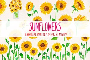 Bright Sunflowers 34 Sunny Vectors