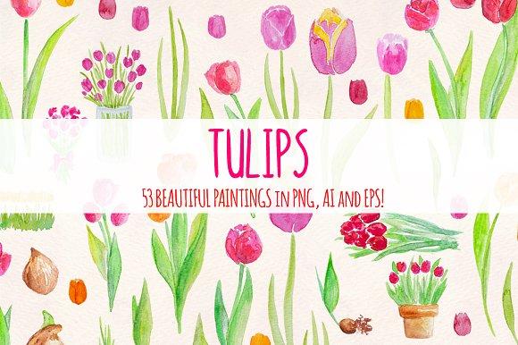 53 Bright Tulip Watercolor Clip Art in Illustrations