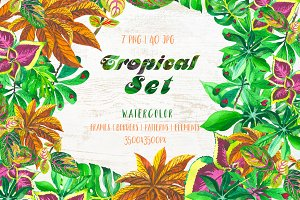 Exotic tropical set PNG watercolor