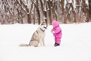 Little baby with Husky dog