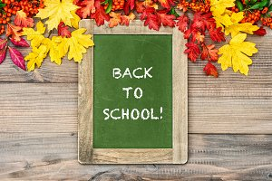 Autumn background Back to school