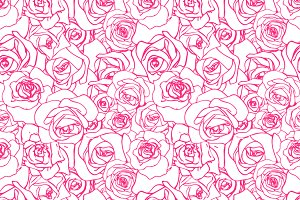 Beautiful pink outline rosebuds