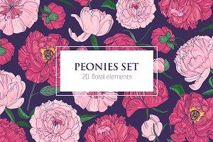 Set of peonies - flowers,buds,leaves