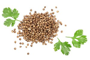 coriander seed and leaves isolated on white background. Top view. Flat lay pattern