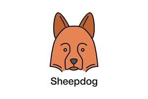 Shetland Sheepdog color icon