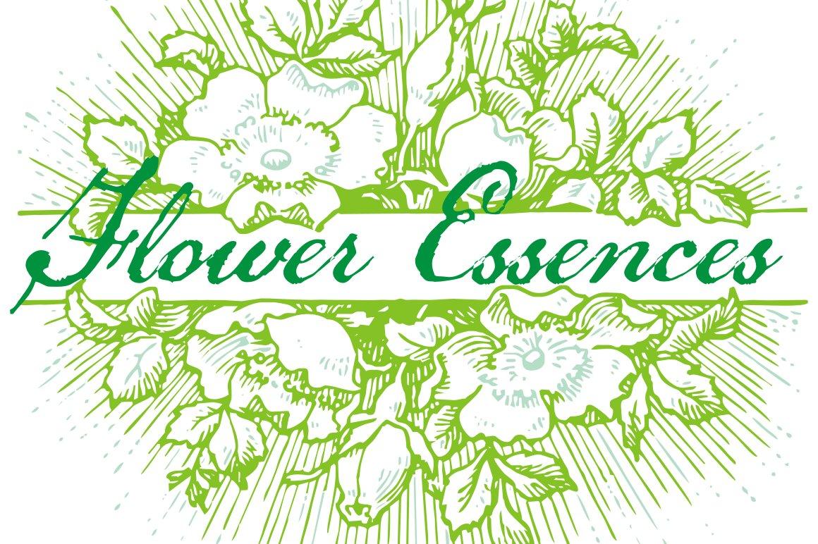 Flower Essences Symbol Fonts Creative Market