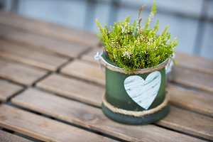 Green pot with flower and heart on