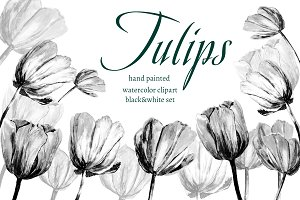 Watercolor set. Clip Art - Tulips