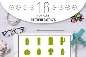 Different cactuses icons set in flat