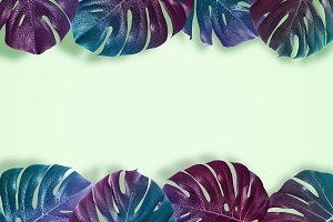 Creative tropical layout with pattern with gradient monster leav