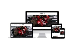 Opal Rose ProPhoto 6 Template
