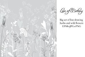 Love of Botany
