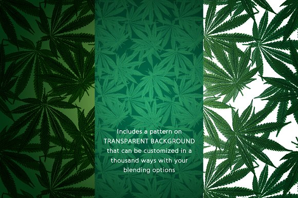 Hemp & Cannabis Leaf Patterns in Patterns - product preview 2