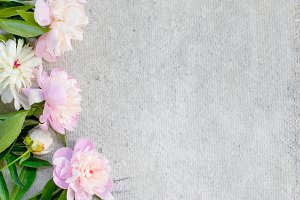 Grey background with peony