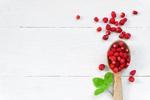 Ripe wild strawberry, background