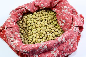 Soybean seeds in a bag. Soybean seeds
