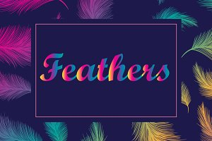 Vector feathers: patterns