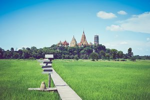 The image of a farm with a wooden walkway and a back is a temple. in the summer