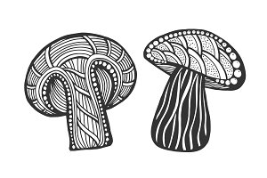 Hand drawn magic mushroom
