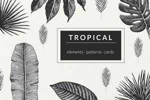 Tropical. Graphics, Patterns, Cards.