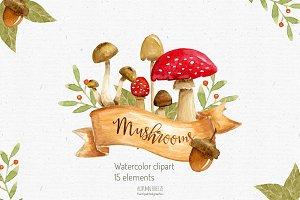 watercolor mushroom clipart