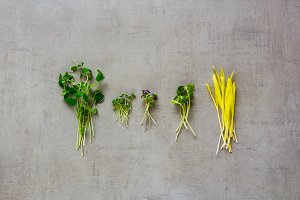 Healthy cress salad