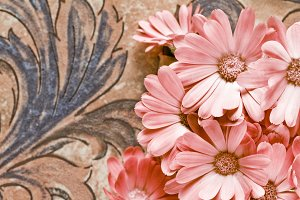 Group of flowers on old tiles backgr