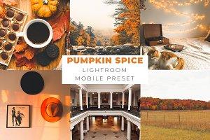 Pumpkin Spice Lightroom Mobile Prese