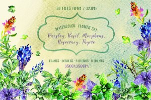 Bouquet of herbs PNG watercolor set