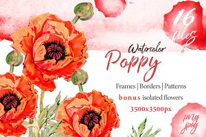 Watercolor red poppy PNG set