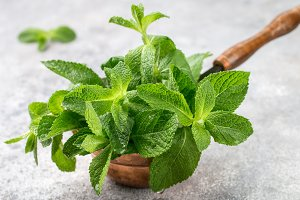 Fresh green organic mint