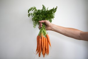 Male hands holding carrots