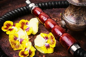 Asian tobacco hookah with flower aro