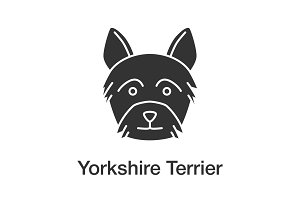 Yorkshire Terrier glyph icon