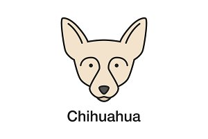 Chihuahua color icon