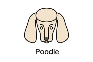 Poodle color icon