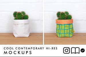 Fabric planter mockup with cactus