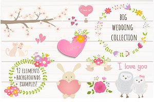 Wedding collection+bonus!