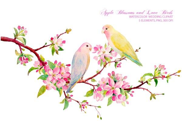 Wedding Clipart Apple Blossoms Bird…