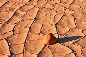 The cracked dry ground