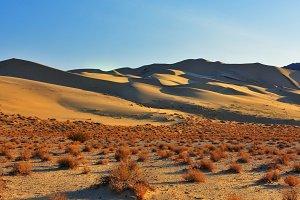 Sandy dune Eureka