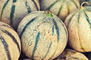 Ripe fresh melons pile in a farmers