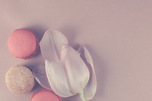 Flat lay of macaroons and Pink tulip