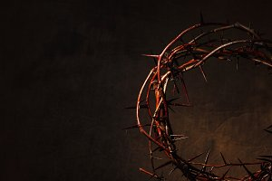 Crown of thorns illuminated