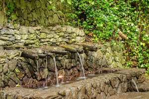 magical water sources of La Gomera