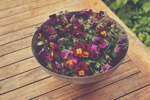 Pansies in a pot
