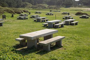 Many benchs and stone tables