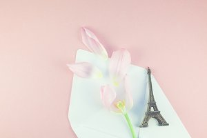 Pink tulip in envelope with eiffel t