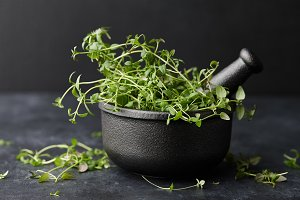 Fresh green thyme herb in mortar